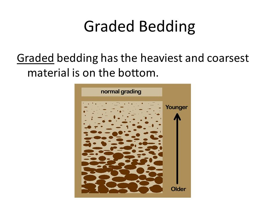 Graded Bedding Graded bedding has the heaviest and coarsest material is on the bottom.