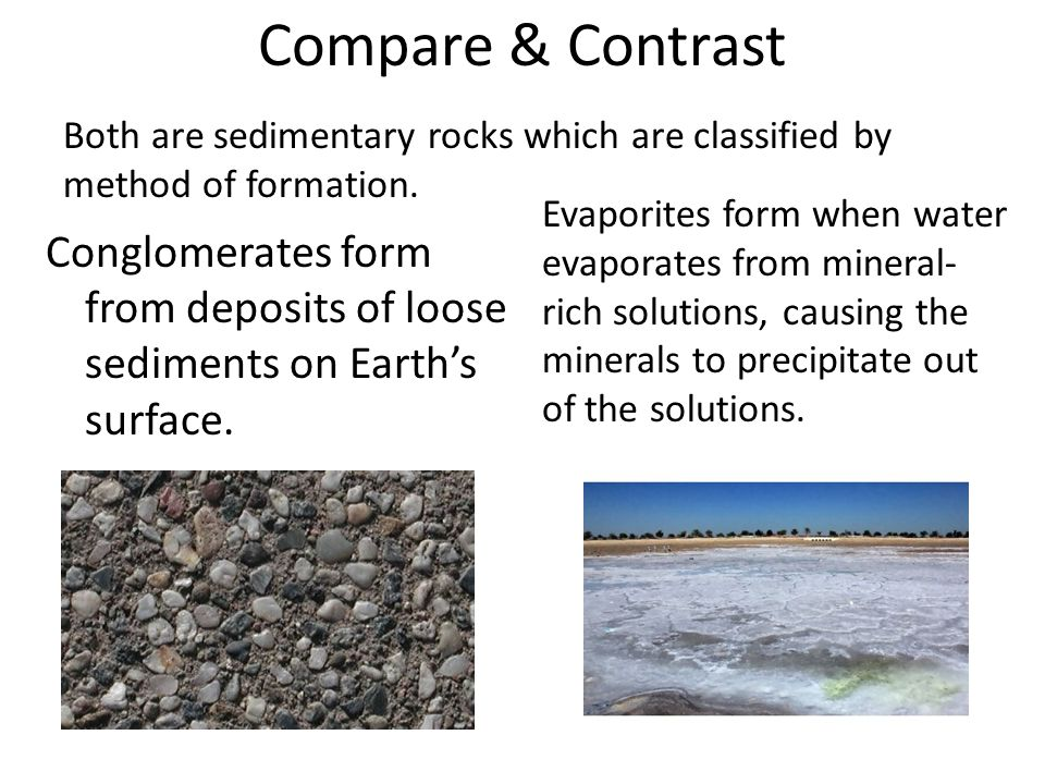 Compare & Contrast Both are sedimentary rocks which are classified by method of formation.