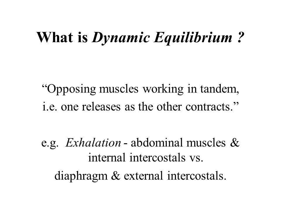 What is Dynamic Equilibrium