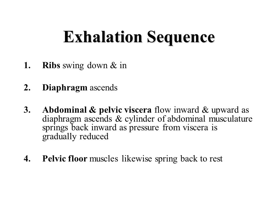 Exhalation Sequence Ribs swing down & in Diaphragm ascends