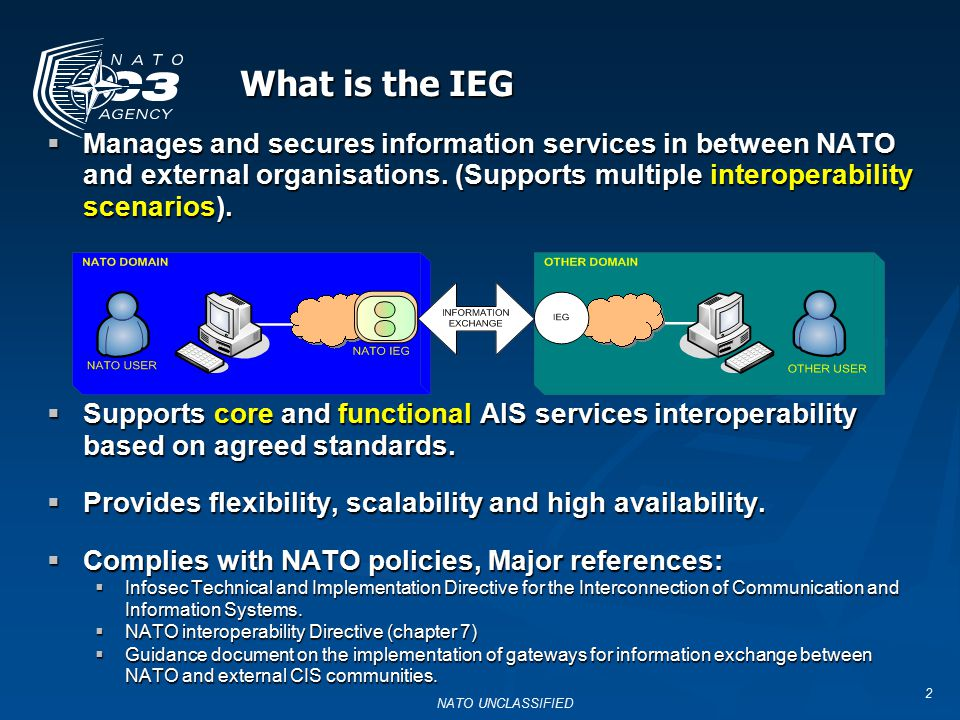 What is the IEG Manages and secures information services in between NATO and external organisations. (Supports multiple interoperability scenarios).