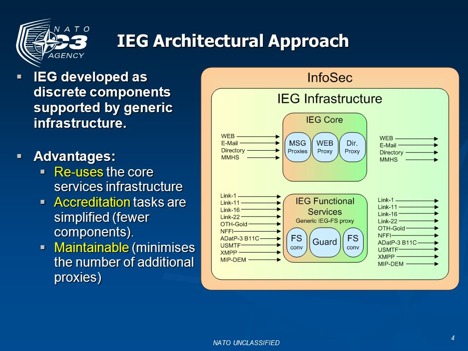 IEG Architectural Approach