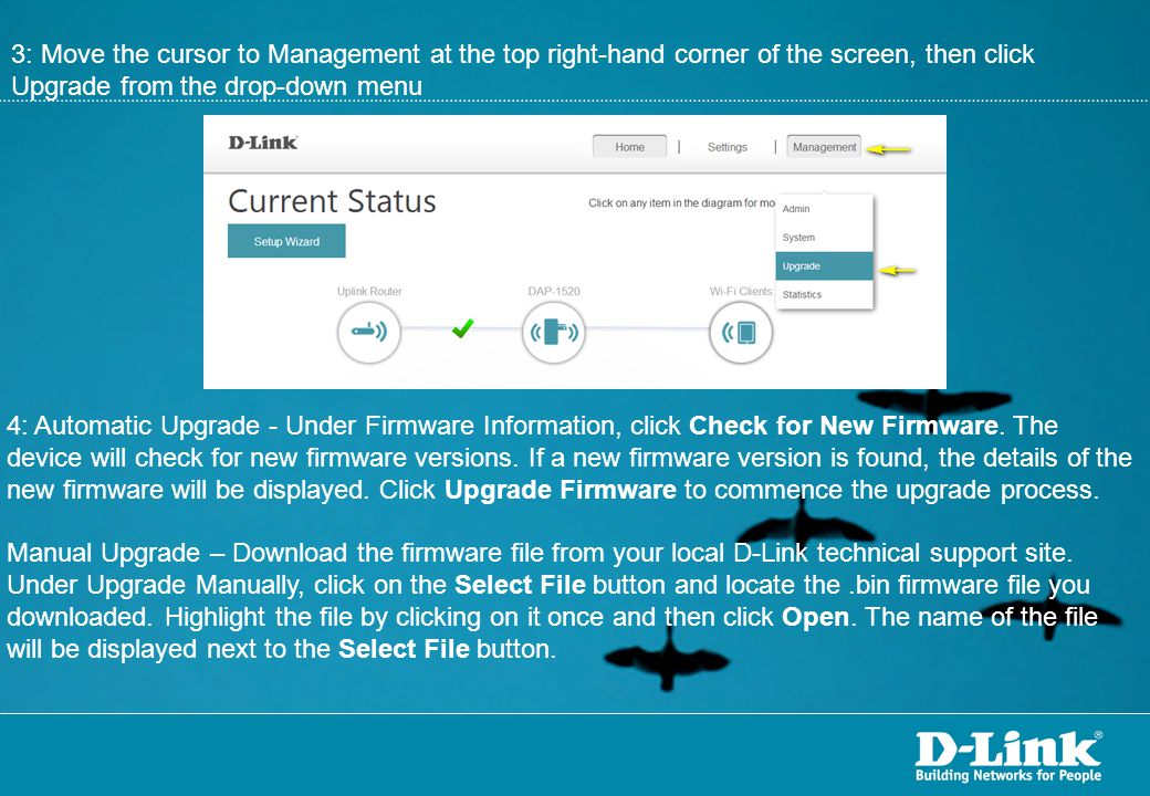 3: Move the cursor to Management at the top right-hand corner of the screen, then click Upgrade from the drop-down menu