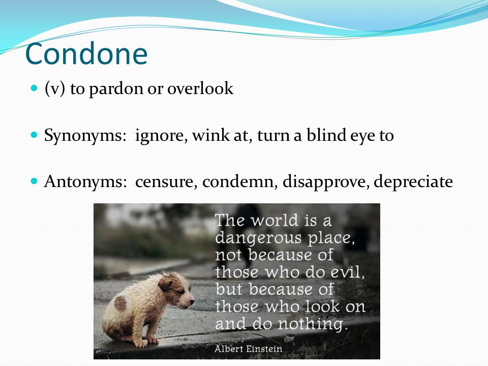 Condone (v) to pardon or overlook