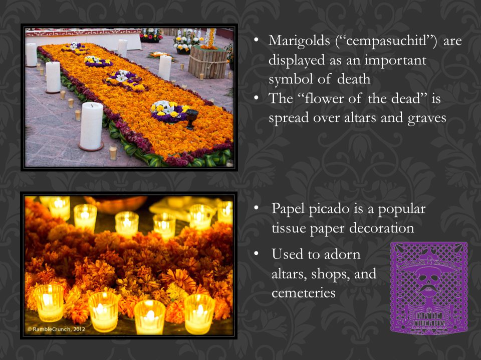 Marigolds ( cempasuchitl ) are displayed as an important symbol of death