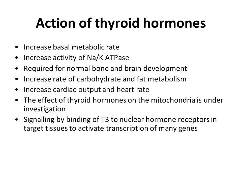 Action of thyroid hormones