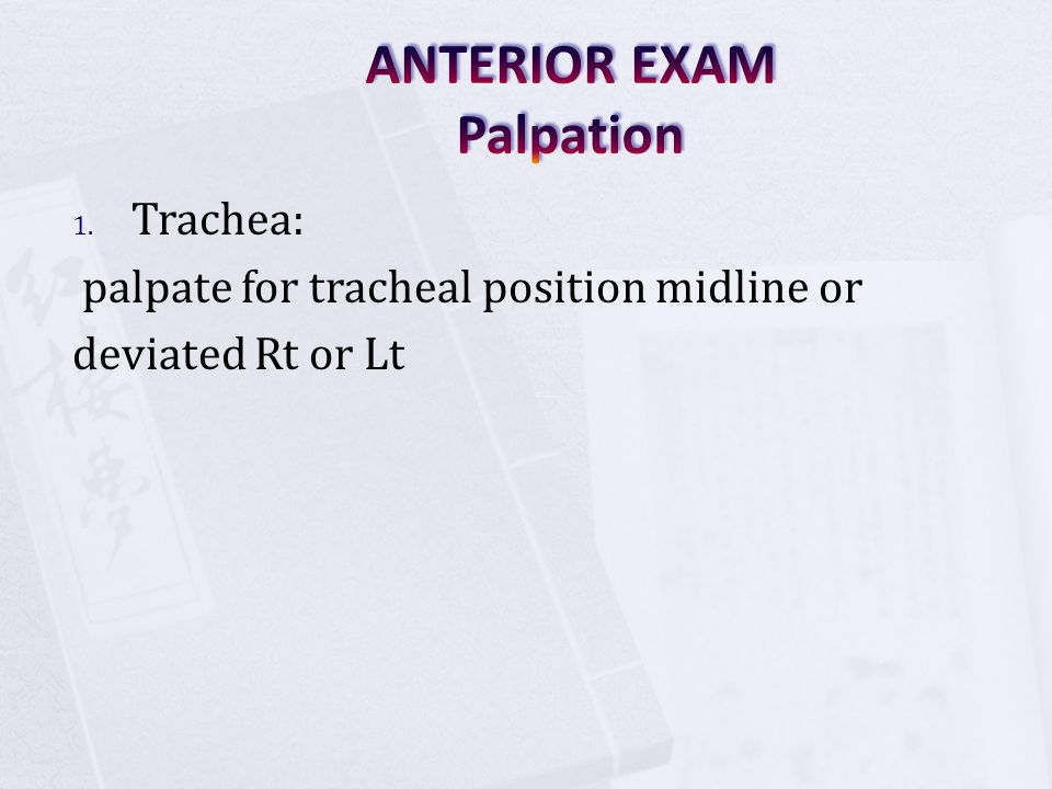 ANTERIOR EXAM Palpation