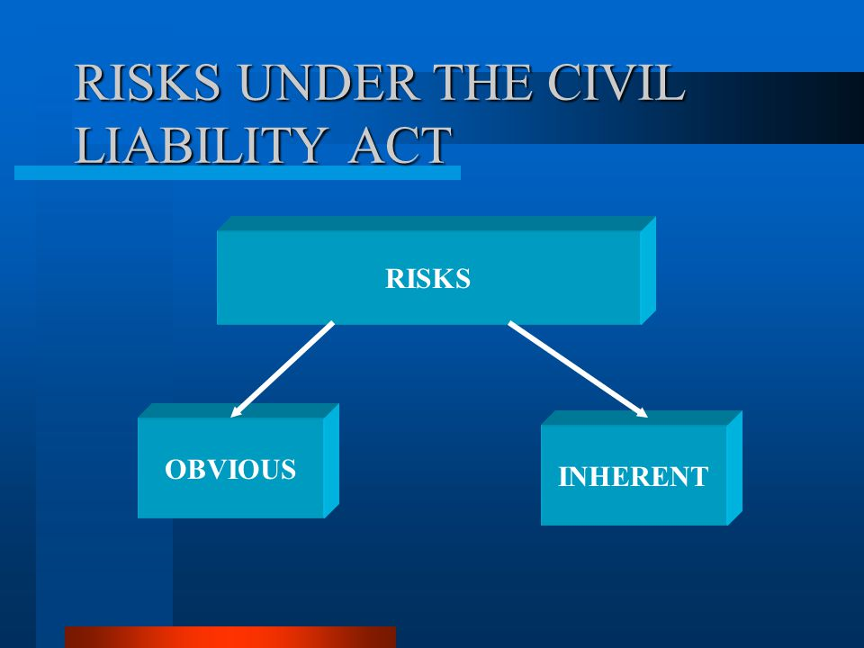 RISKS UNDER THE CIVIL LIABILITY ACT
