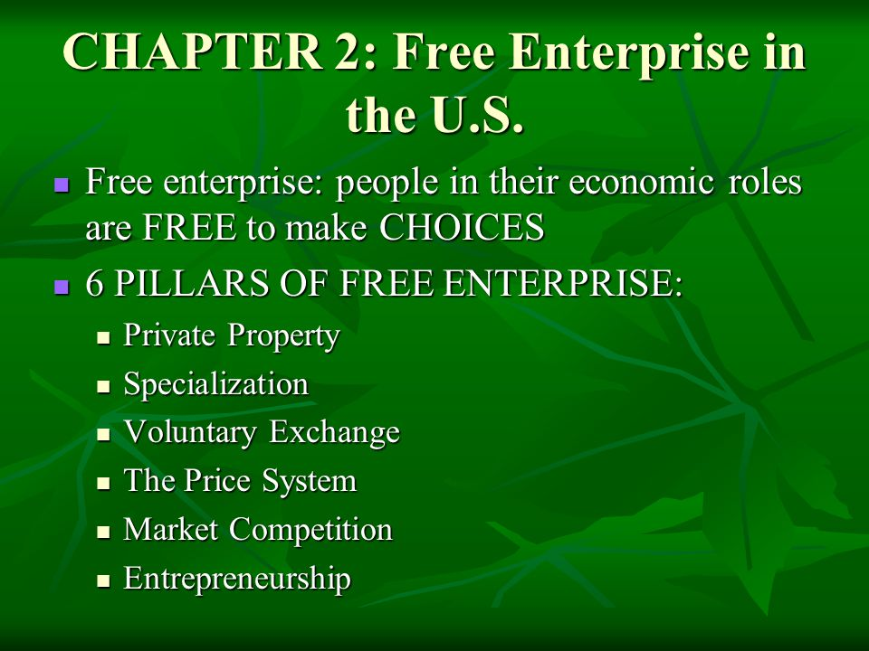 CHAPTER 2: Free Enterprise in the U.S.