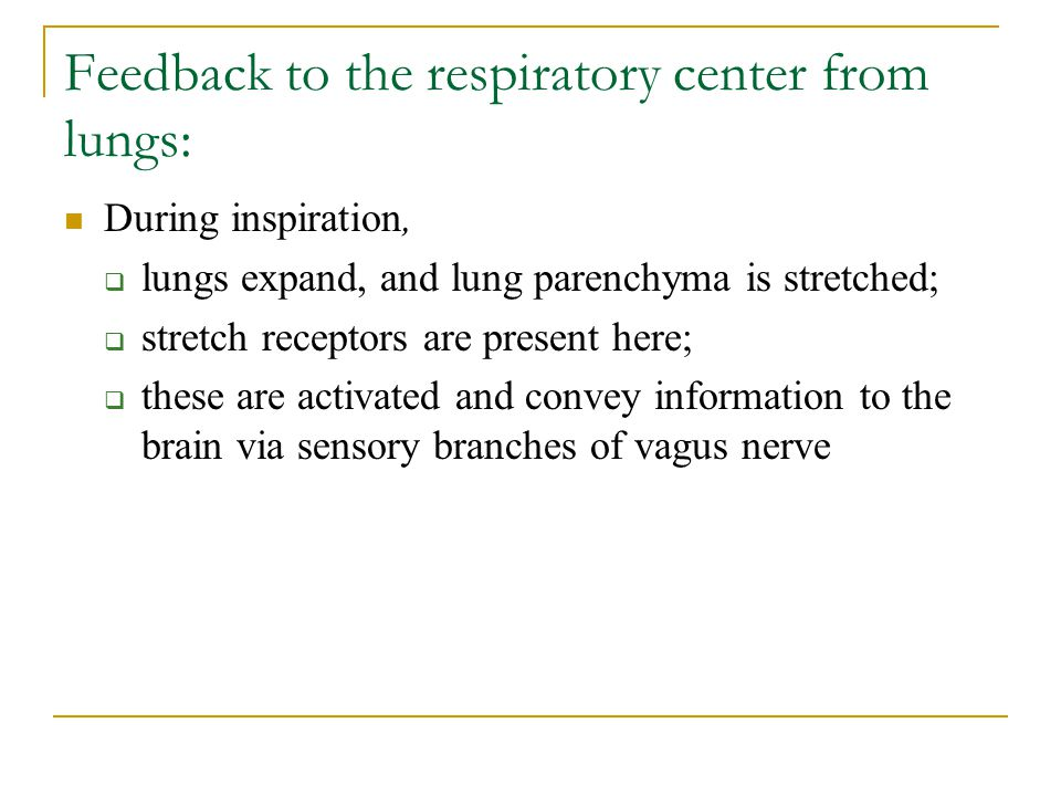 Feedback to the respiratory center from lungs: