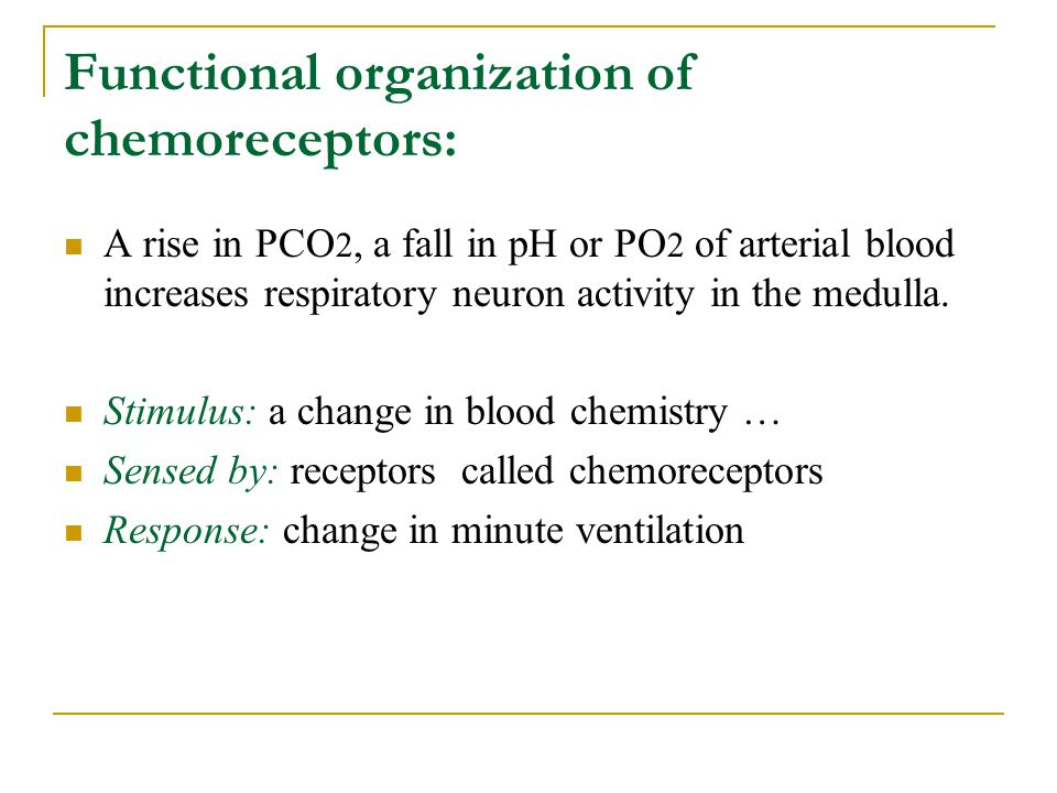 Functional organization of chemoreceptors: