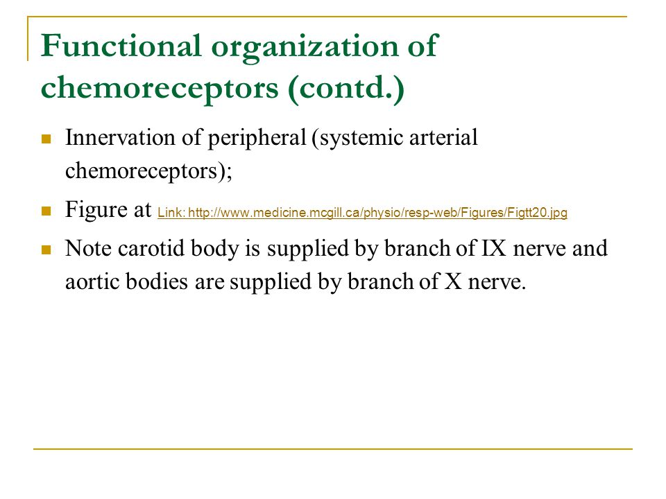 Functional organization of chemoreceptors (contd.)
