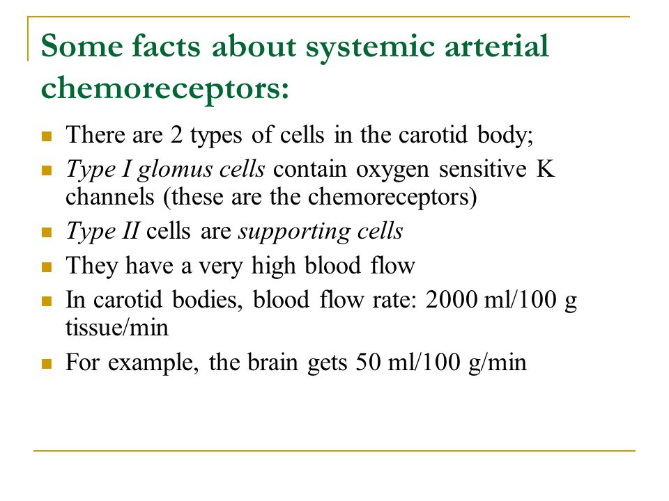 Some facts about systemic arterial chemoreceptors: