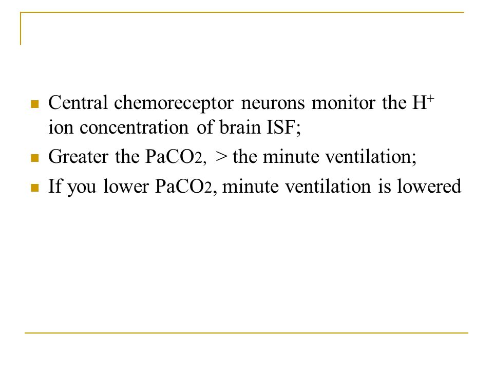 Central chemoreceptor neurons monitor the H+ ion concentration of brain ISF;