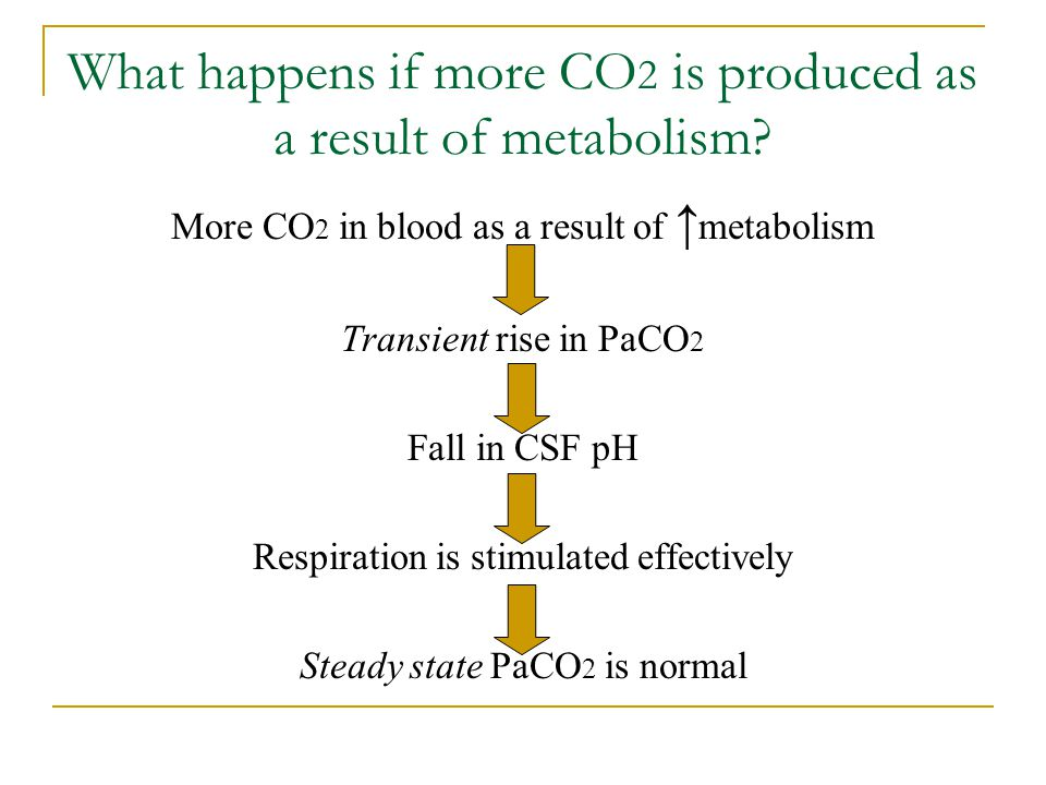 What happens if more CO2 is produced as a result of metabolism