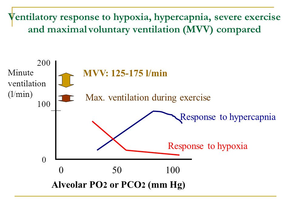 Ventilatory response to hypoxia, hypercapnia, severe exercise and maximal voluntary ventilation (MVV) compared