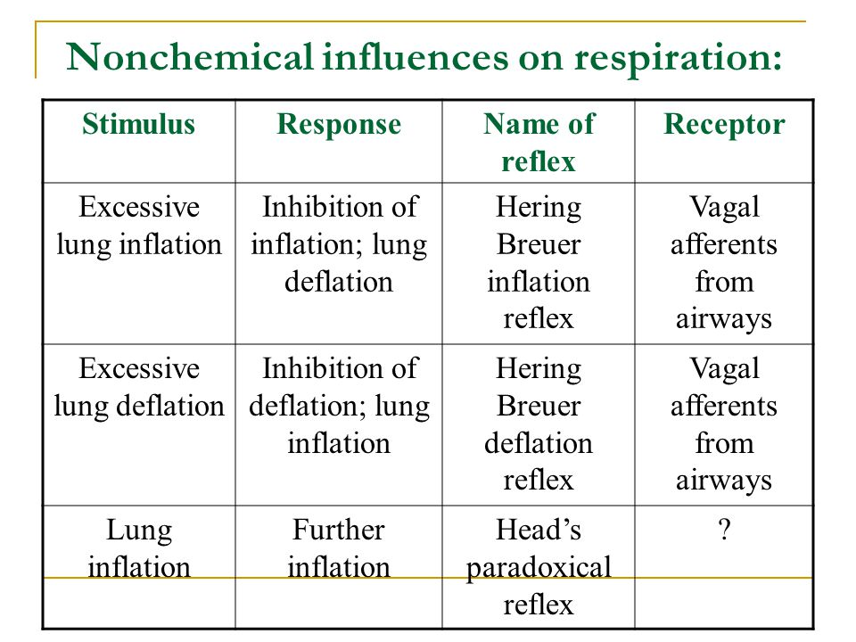 Nonchemical influences on respiration: