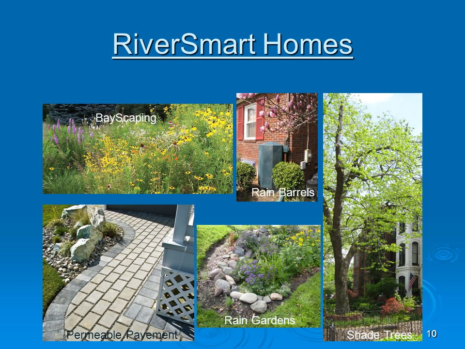 RiverSmart Homes BayScaping Rain Barrels Rain Gardens