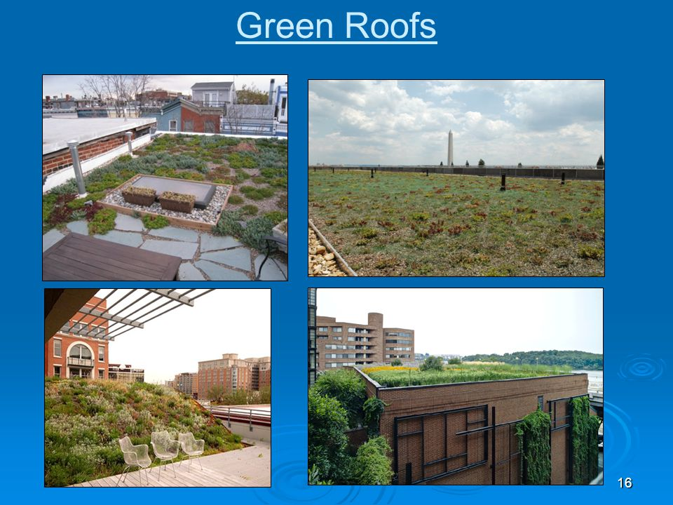 Green Roofs Row house retrofit, DOI retrofit, Pepco utility substation retrofit, ASLA retrofit 16