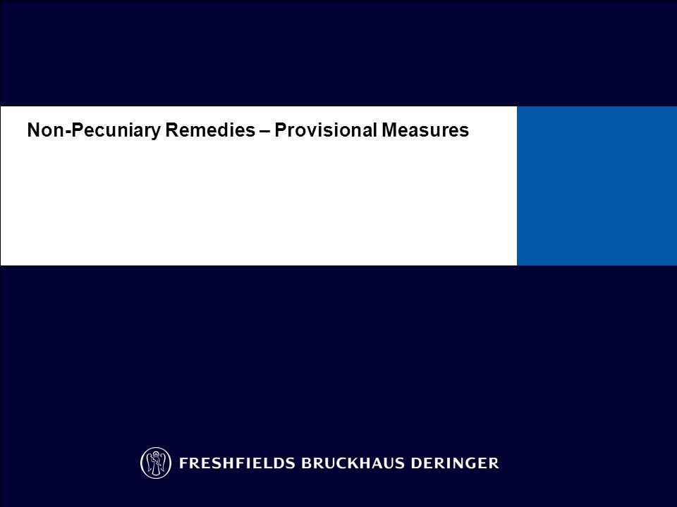 Availability of Provisional Measures