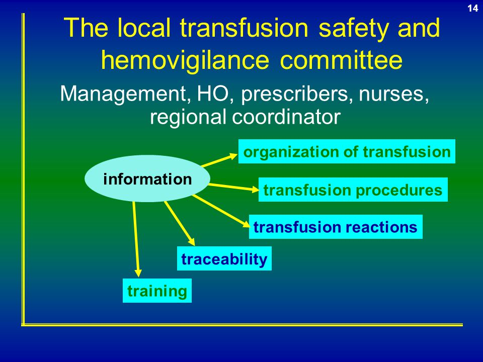 The local transfusion safety and hemovigilance committee