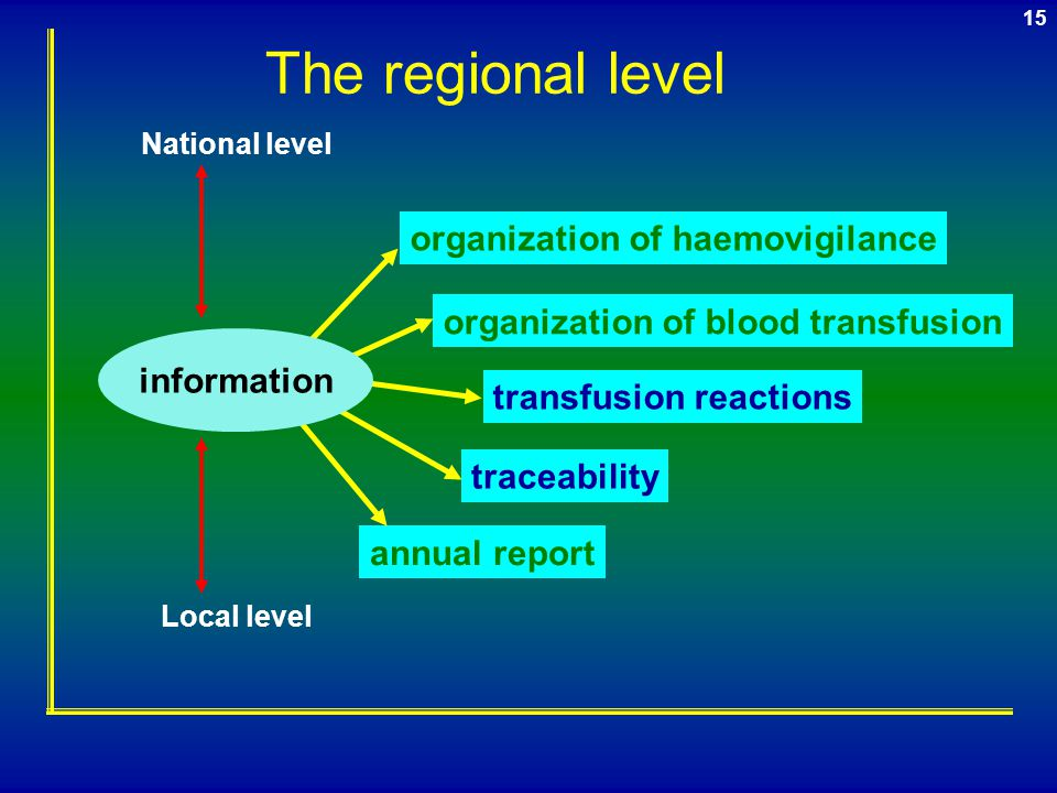 The regional level organization of haemovigilance