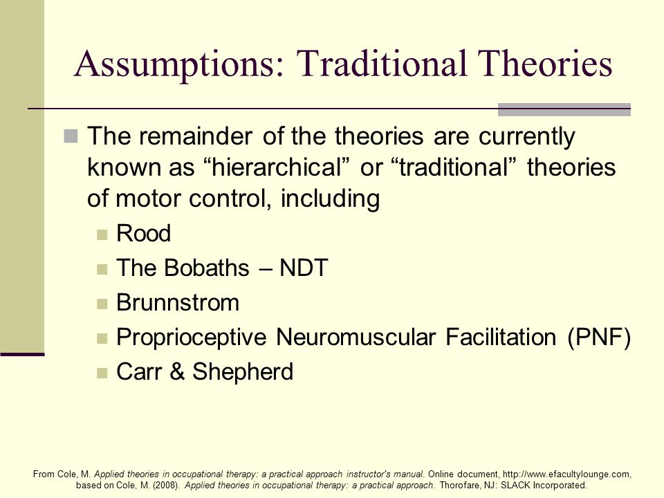 Assumptions: Traditional Theories
