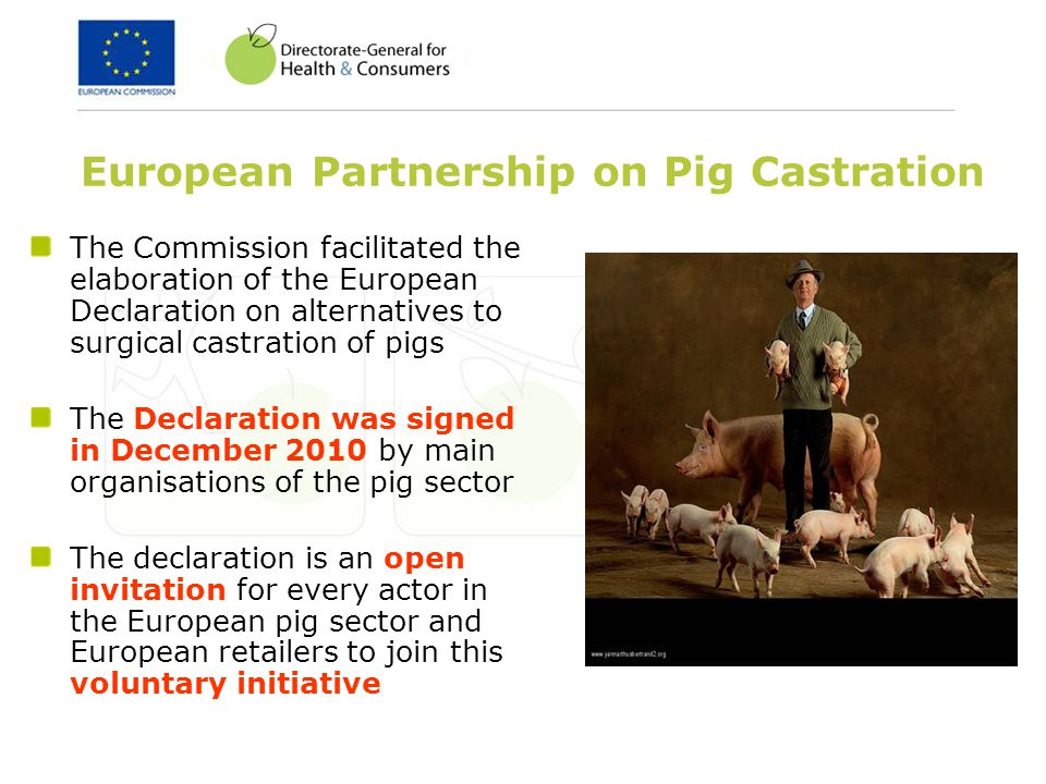 European Partnership on Pig Castration