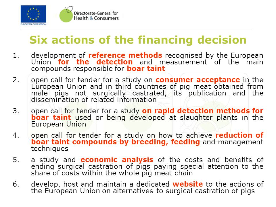 Six actions of the financing decision