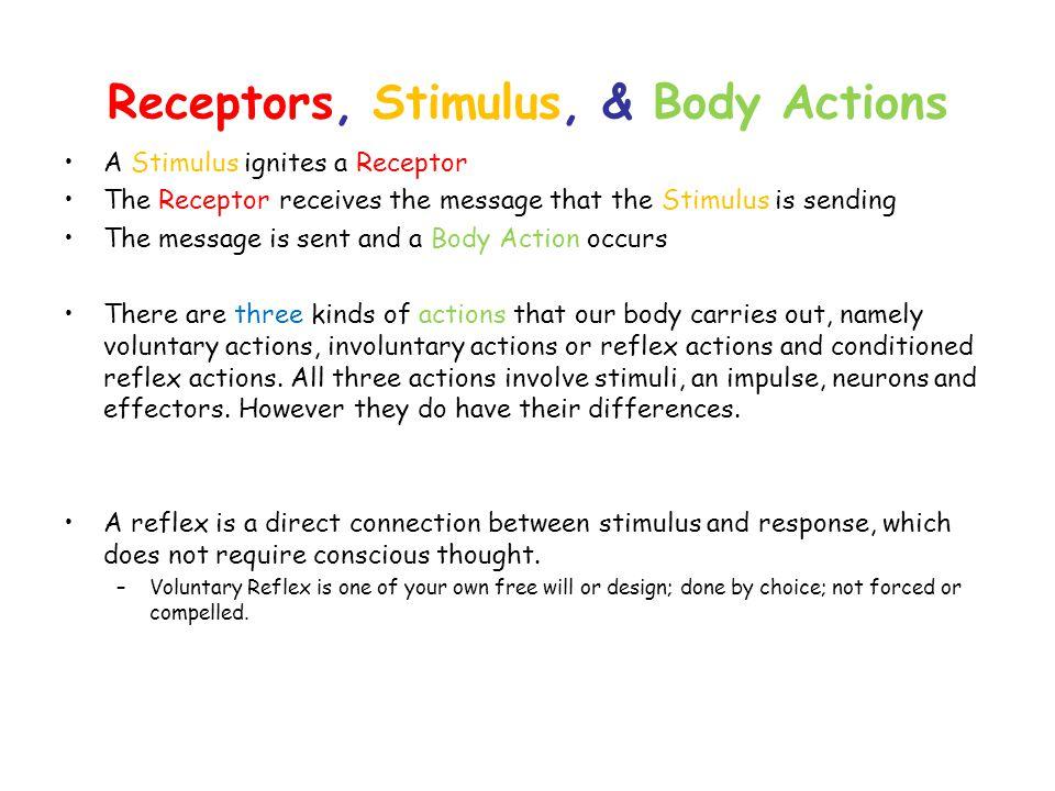 Receptors, Stimulus, & Body Actions