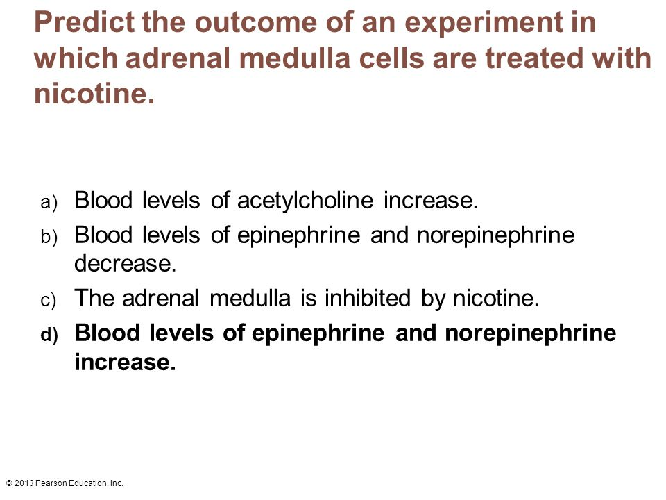 Predict the outcome of an experiment in which adrenal medulla cells are treated with nicotine.
