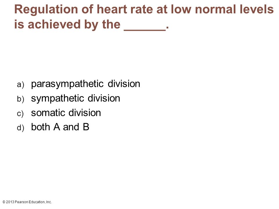 Regulation of heart rate at low normal levels is achieved by the ______.