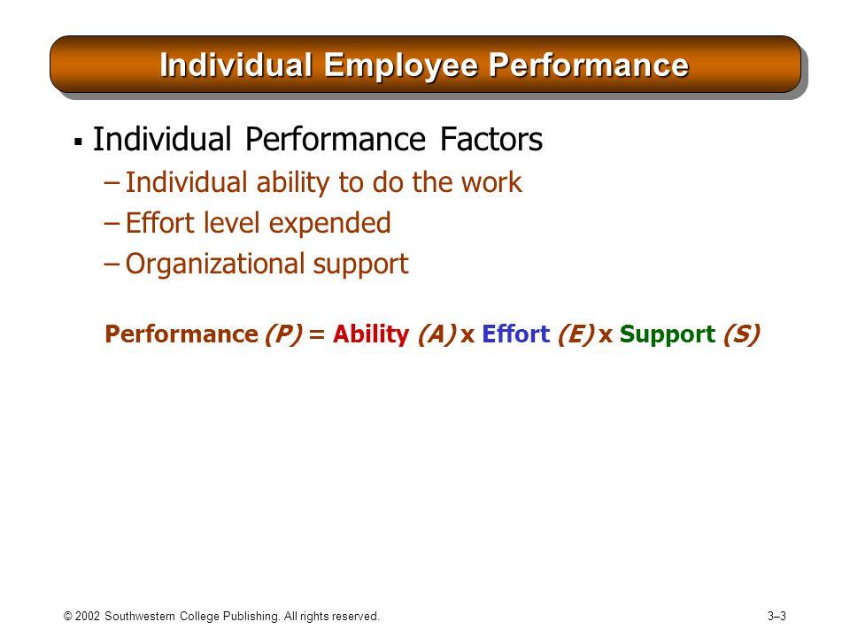 Individual Employee Performance