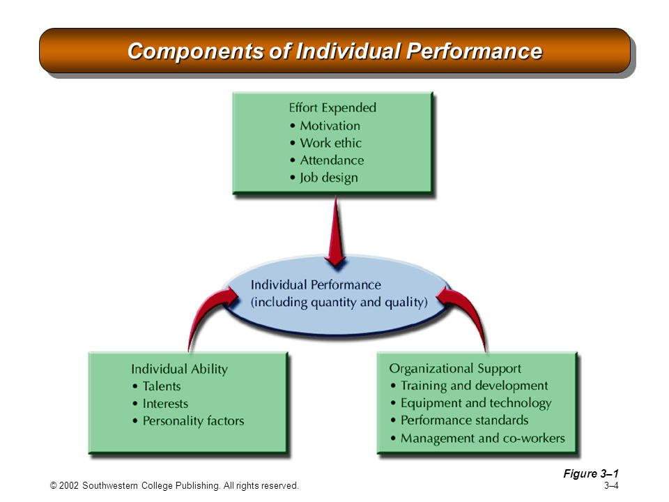 Components of Individual Performance