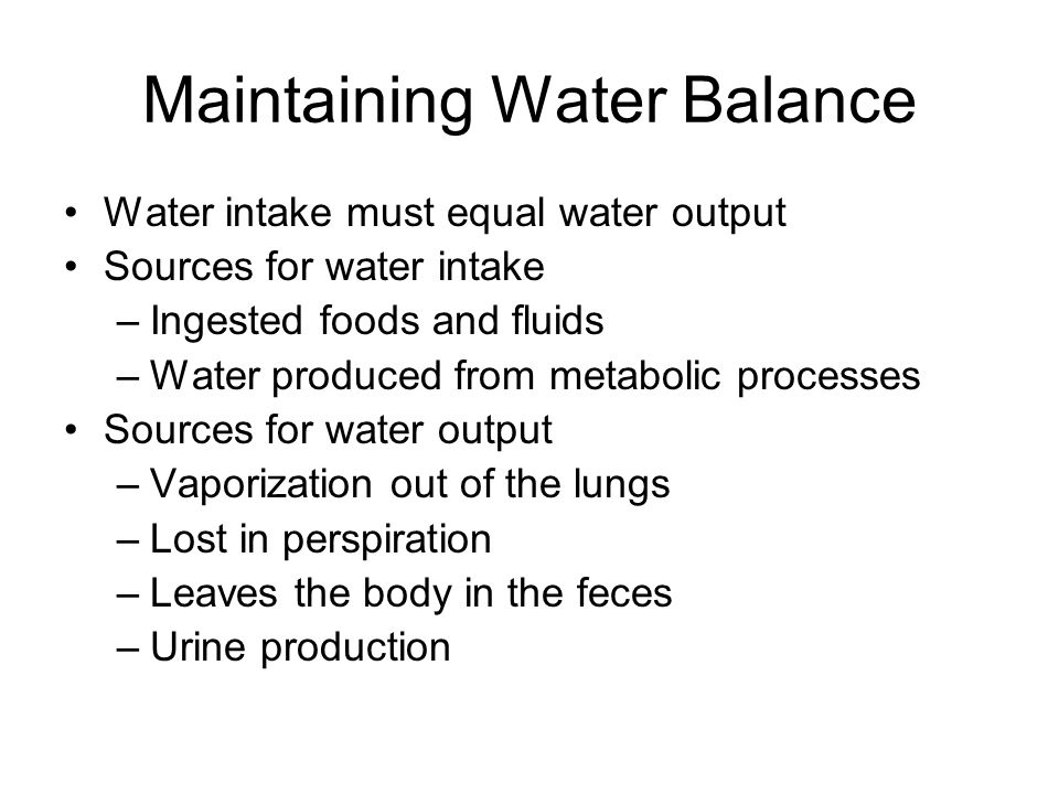 Maintaining Water Balance