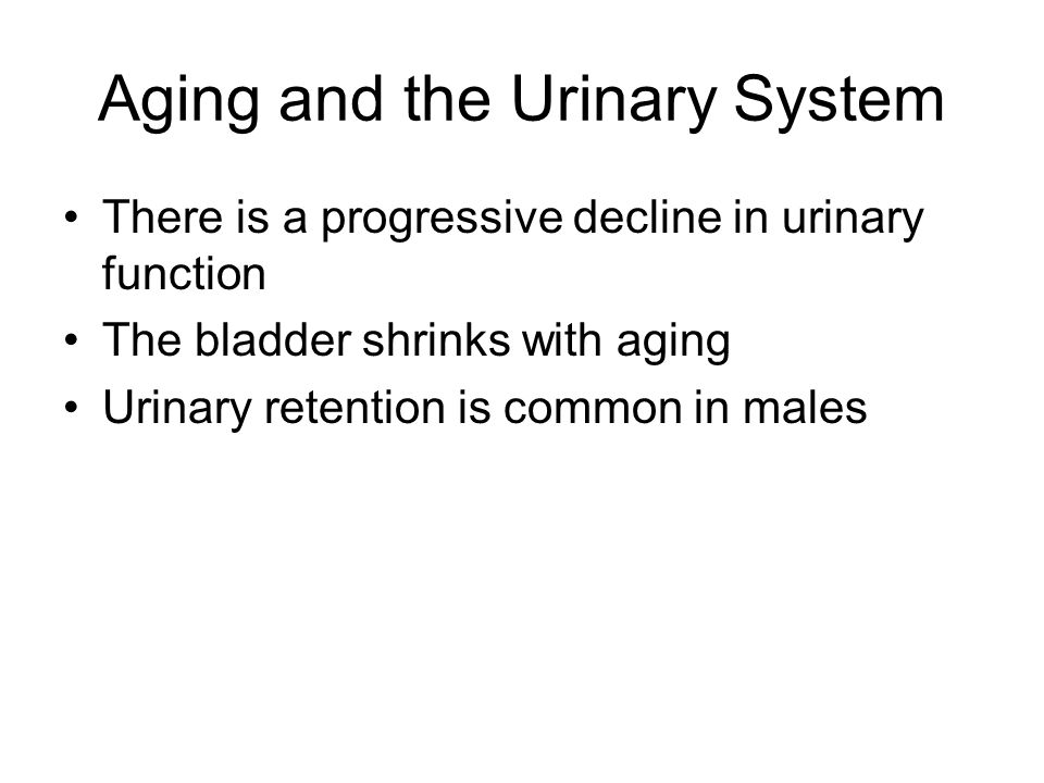 Aging and the Urinary System