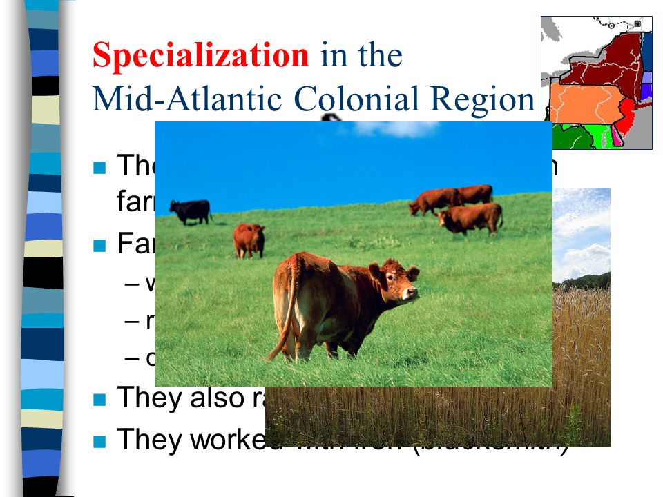 Specialization in the Mid-Atlantic Colonial Region