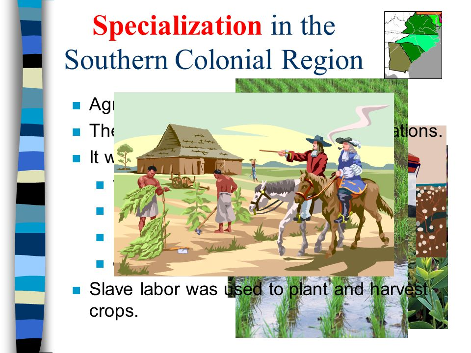 Specialization in the Southern Colonial Region