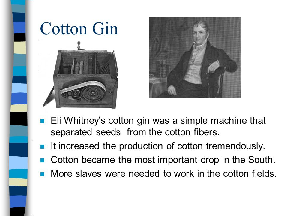 Cotton Gin Eli Whitney's cotton gin was a simple machine that separated seeds from the cotton fibers.