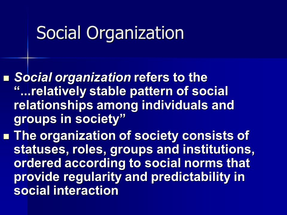 Social Organization Social organization refers to the ...relatively stable pattern of social relationships among individuals and groups in society