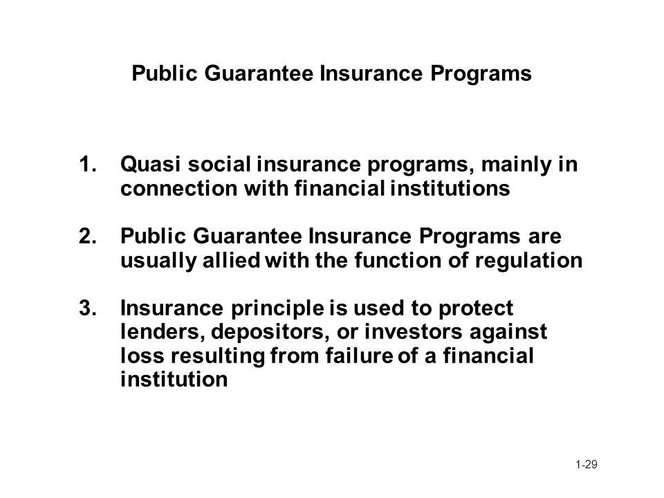 Public Guarantee Insurance Programs