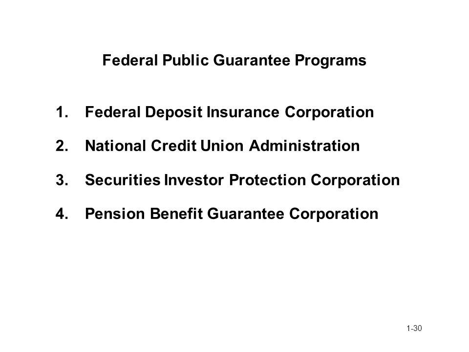 Federal Public Guarantee Programs