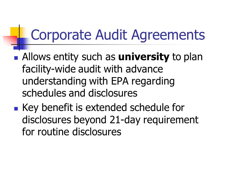 Corporate Audit Agreements