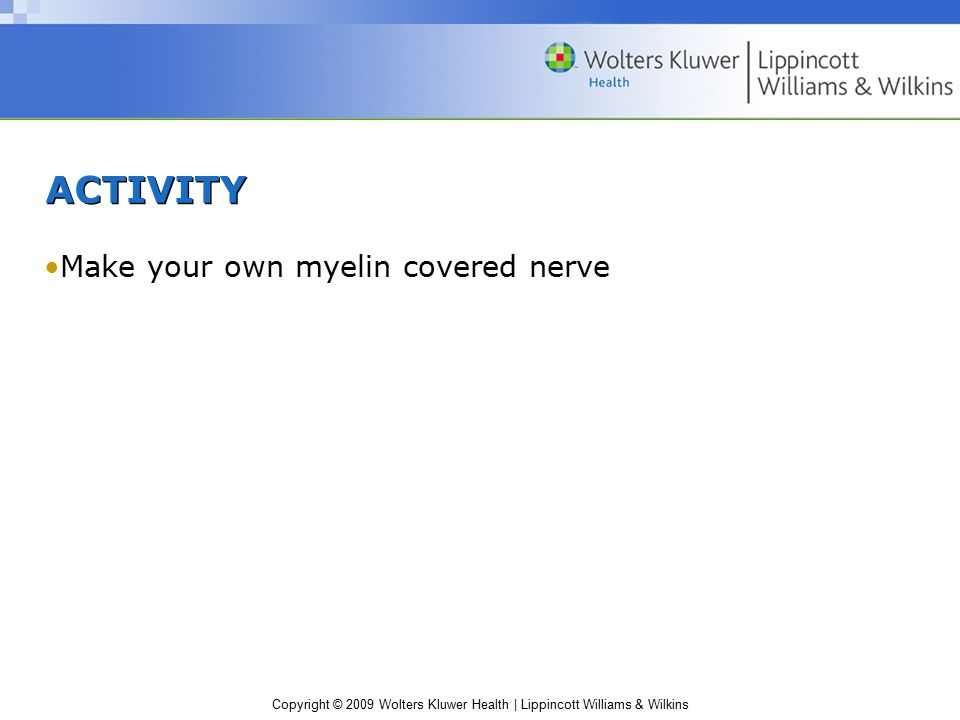 ACTIVITY Make your own myelin covered nerve