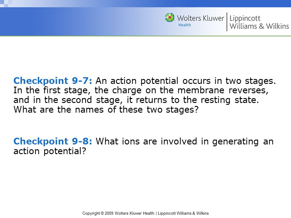 Checkpoint 9-7: An action potential occurs in two stages