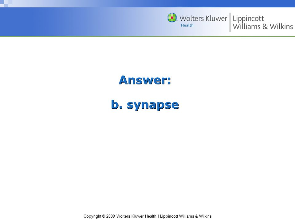 Answer: b. synapse