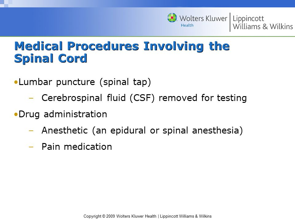 Medical Procedures Involving the Spinal Cord