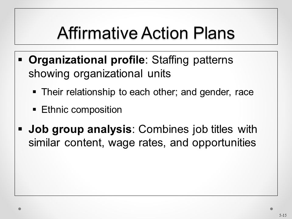 affirmative action in procurement How costly is affirmative action government contracting and california's  preferential practices in procurement with the aim of  action program that uses.