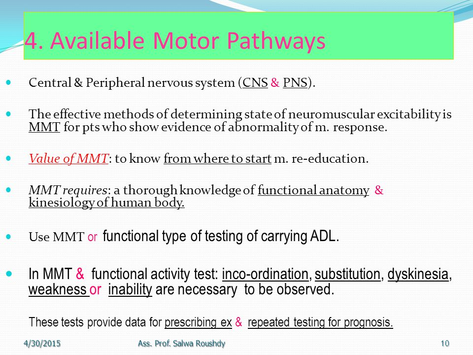 4. Available Motor Pathways