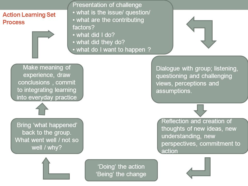Action Learning Set Process